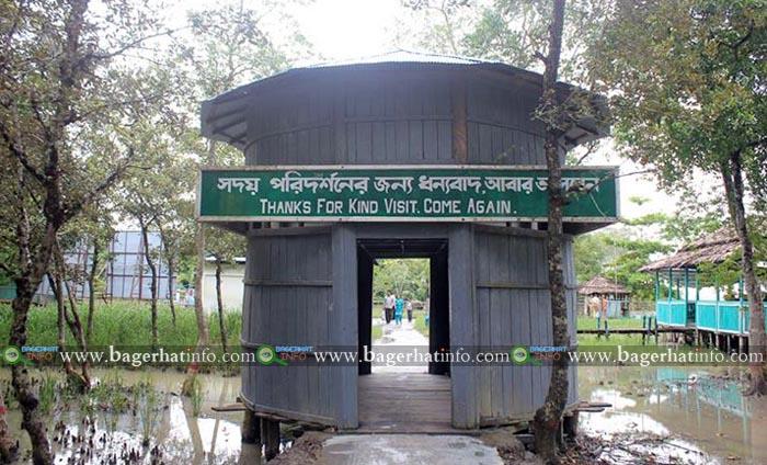 karamjal-Sundarban-Pic-02