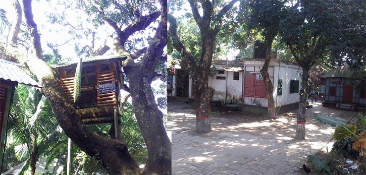 Jasimuddin-Home(2)