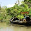 সুন্দরবনের অভয়ারণ্যে মাছ শিকার: বন বিভাগের ৪ জন বরখাস্ত