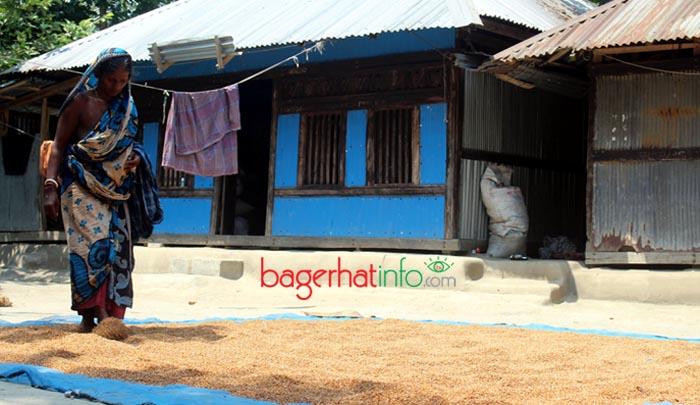 Bagerhat-Pic-3(01-05-2016)Rice-Procising