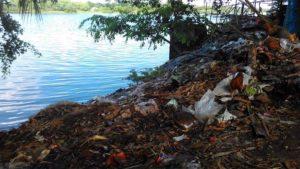 Bagerhat-Pic-02(29-06-2016)Dust-Dumping-voyrob-Voirob-river