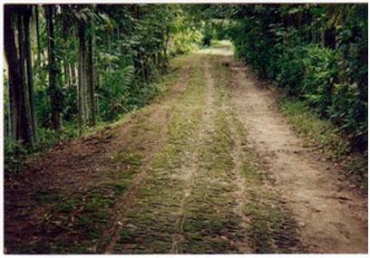 Khanjan-Road-Bagerhat-Pic-07